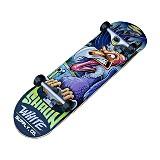 Skateboards & Gear