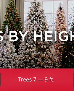 Shop Trees 7 — 9ft