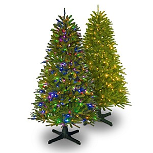 Color Switch Plus 7.5' Regal fir tree