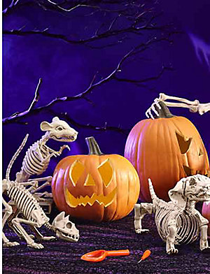 25% off Halloween décor | Plus, extra 10% off with code: KBOO