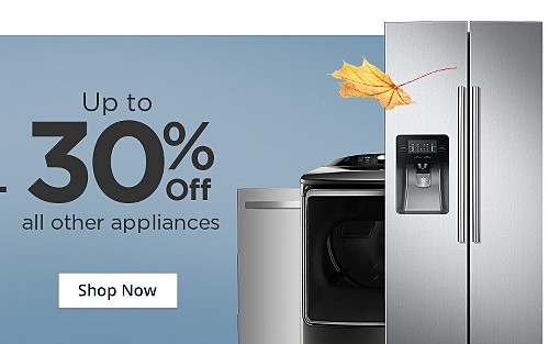 Plus, up to 30% off all other appliances
