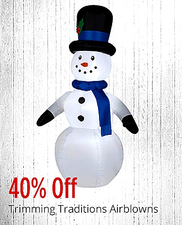 40% off Airblowns