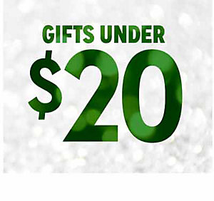 GIFTS UNDER $20 | shop now