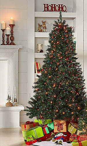 Christmas Trees, Lights & Decor, up to 50% off