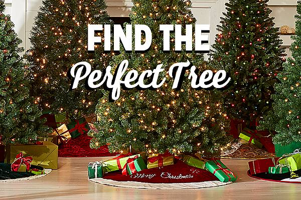 Find the perfect tree