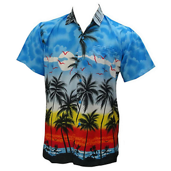 Hawaiian&#x20&#x3b;Shirts