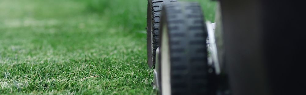 Mowing Damage