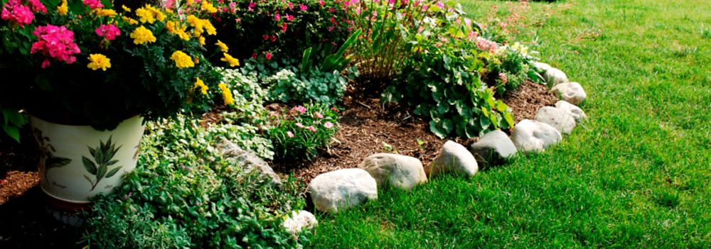 Easy Landscape Edging Ideas to Make Your Yard Shine - Sears