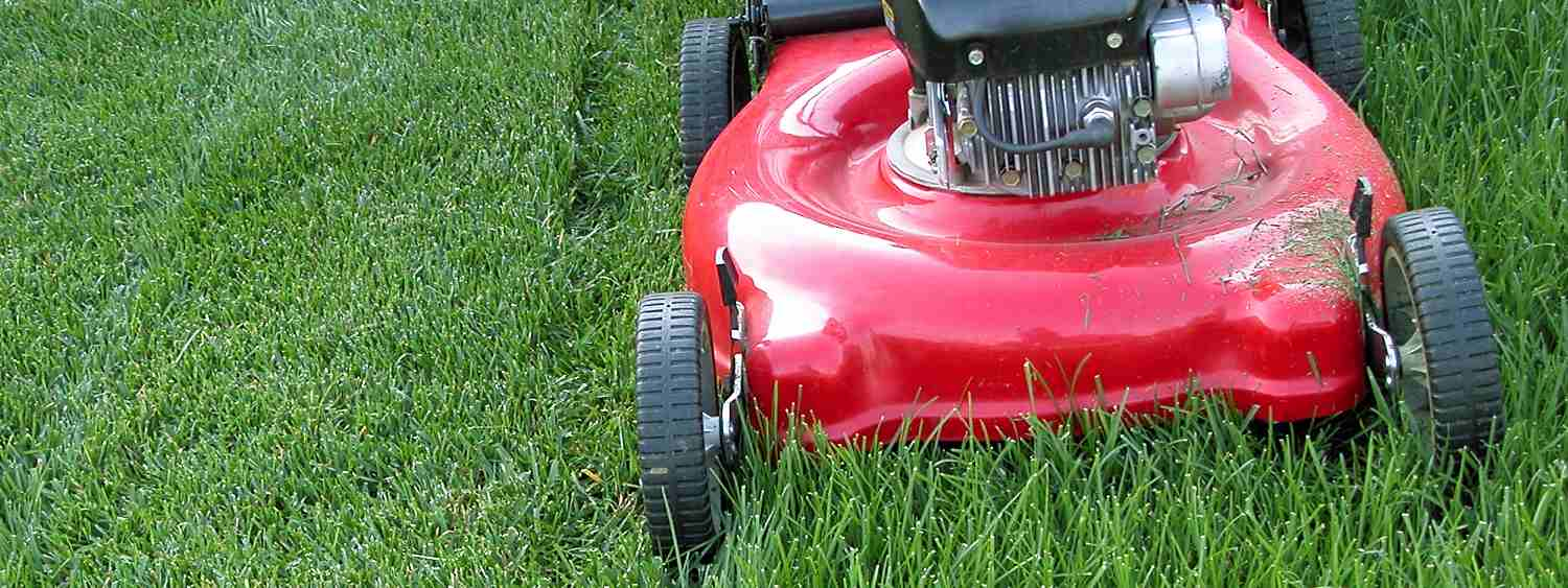 Cutting Grass at the Right Length