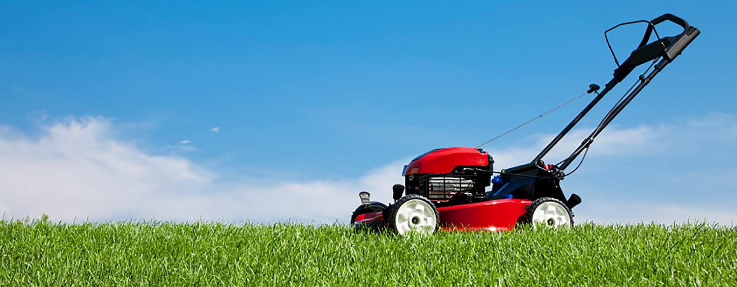 Lawn mower sitting on the grass