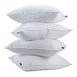 Mattress Pads & Pillows