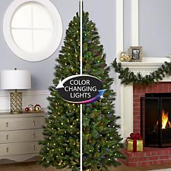 Pre&#x20&#x3b;Lit&#x3a&#x3b;&#x20&#x3b;Color&#x20&#x3b;Switch&#x20&#x3b;Trees