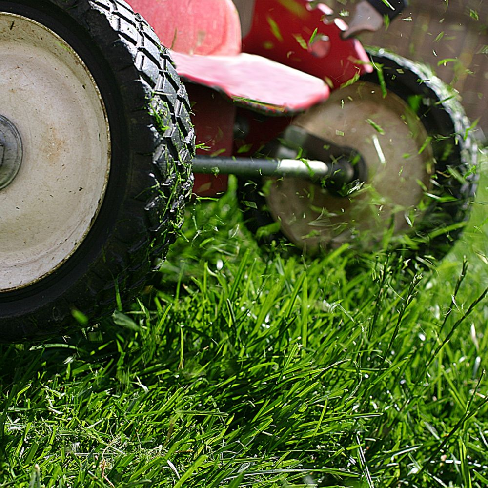 What is the Proper Mowing Height for Your Lawn?