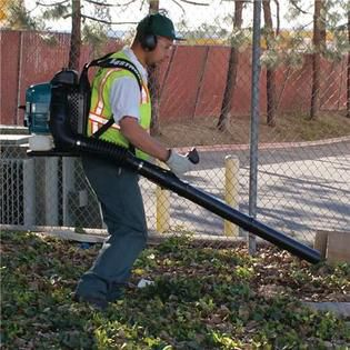 Gas backpack leaf blower