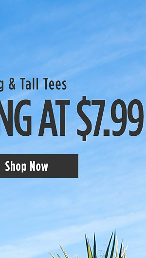 Big & Tall Tee Starting at $7.99