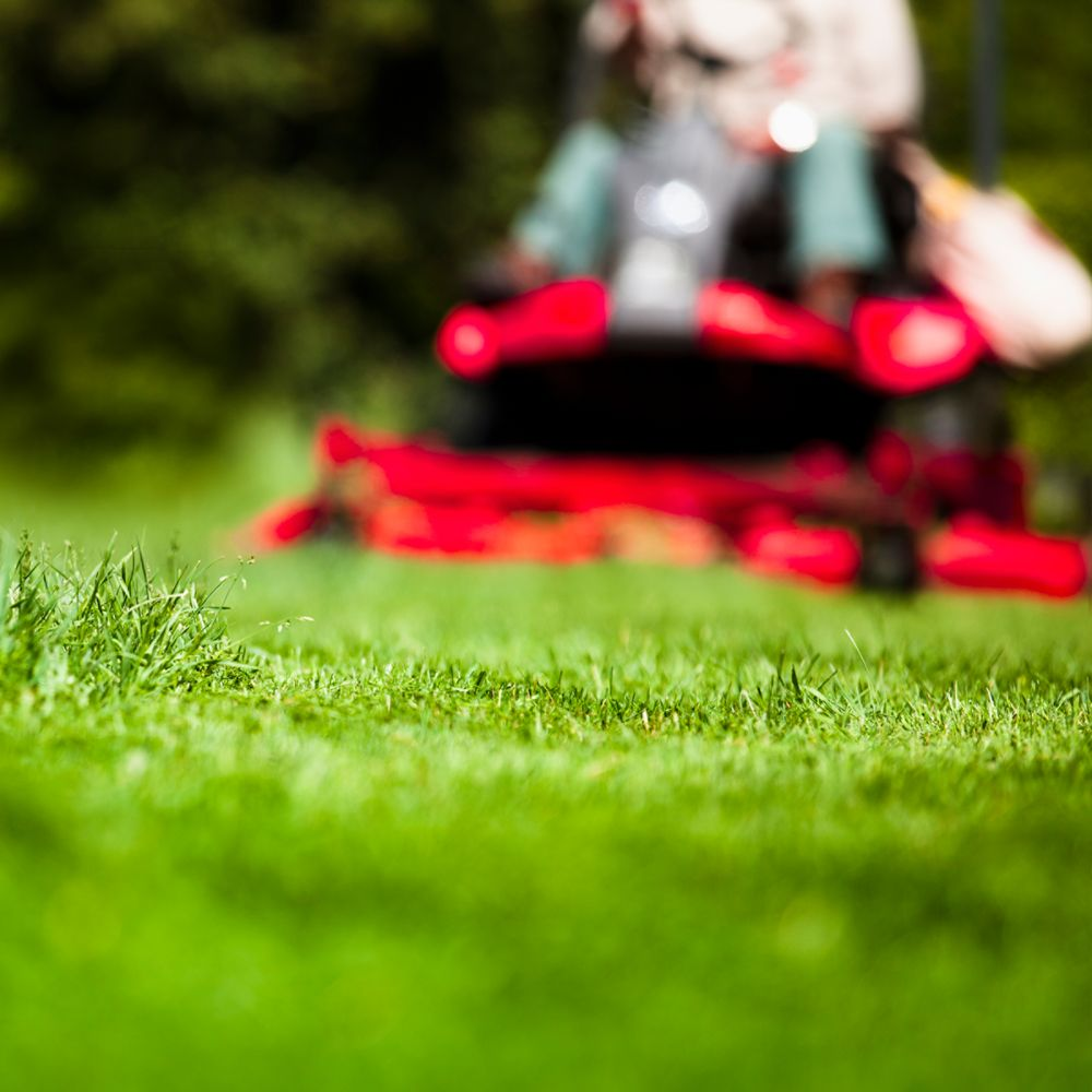 Buying a Riding Mower or Tractor
