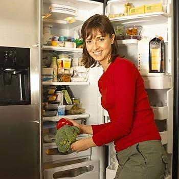 sears deep freezer prices refrigerator showdown auto vs manual defrost sears