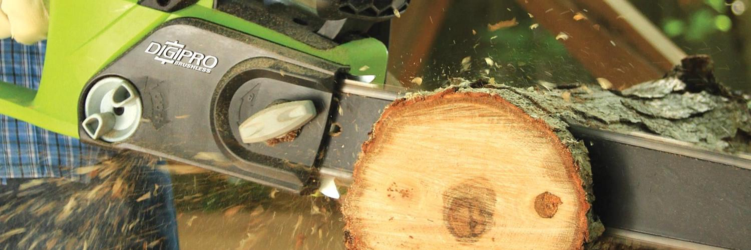 Find everything you need to know about buying a chain saw
