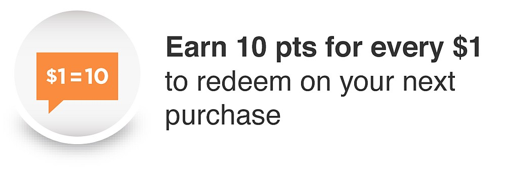 Earn 10 pts for every $1