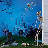 Decoraciones de Halloween para exteriores
