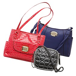 Bags & Accessories for All