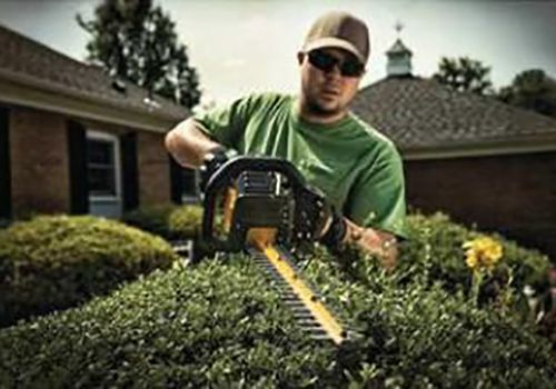 gas hedge trimmers