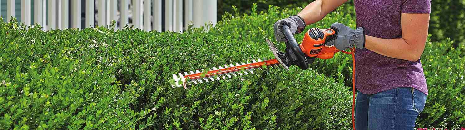 guide to buying a hedge trimmer