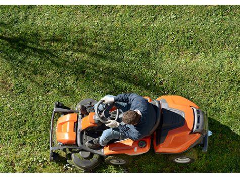 lawn type