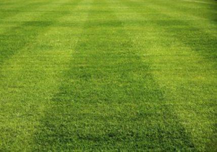 mowing pattern