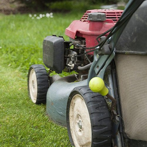 Mowing your lawn in the spring