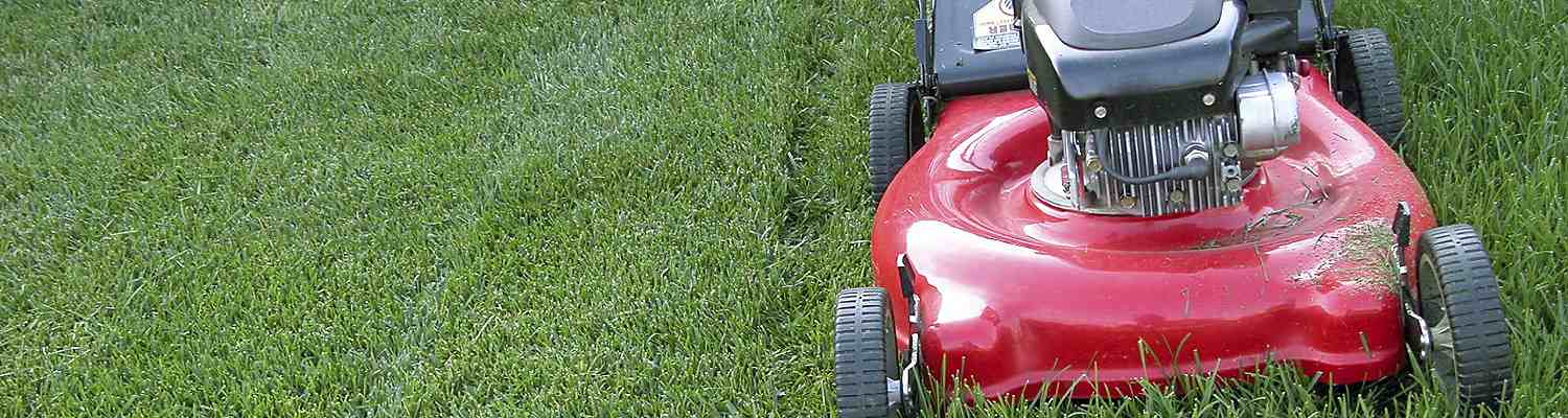 Things to consider when shopping for a lawn mower