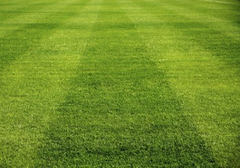 Switch up your lawn mowing patterns