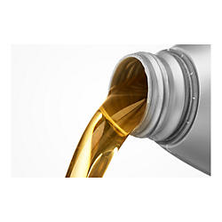 Oil Change & Maintenance