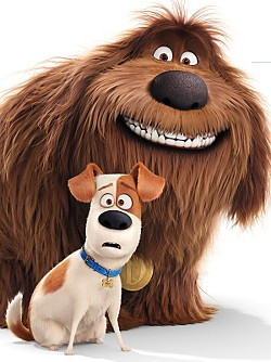 Secret Life of Pets Sweeps