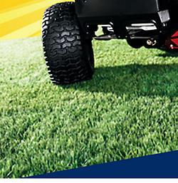 Get 15% CASHBACK in points on lawn & garden
