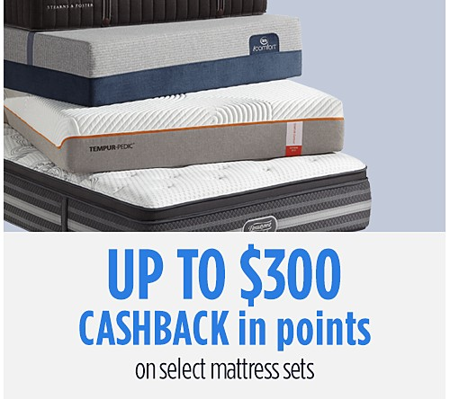 Up to $300 Cashback in Points