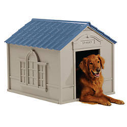 Outdoor Dog Essentials
