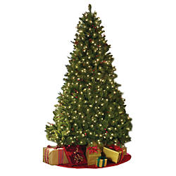 Christmas Tree Shop Sears Share The Knownledge