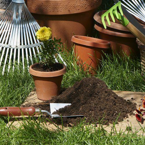 Potting soil and fertilizer